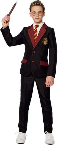 Kinderkostuum Suitmeister Harry Potter - Gryffindor