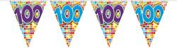 Mini Vlaggenlijn 100 Jaar Blocks