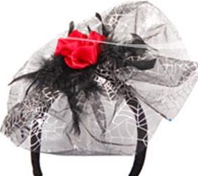 Tiara Zilver Web+Roos
