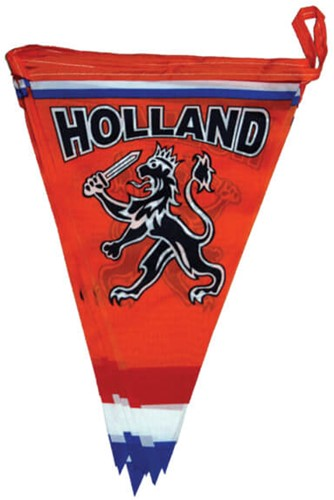 Vlaggenlijn Holland Polyester - 6m