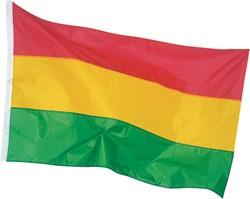 Vlag Carnaval Rood/Geel/Groen