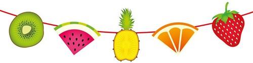Vlaggenlijn Tropisch Fruit (6m)