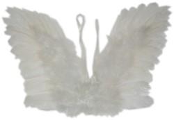 Engelenvleugels Wit met Veren Kind