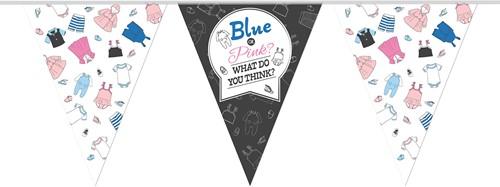 Vlaggenlijn Gender Reveal - Blue or Pink? (10m)
