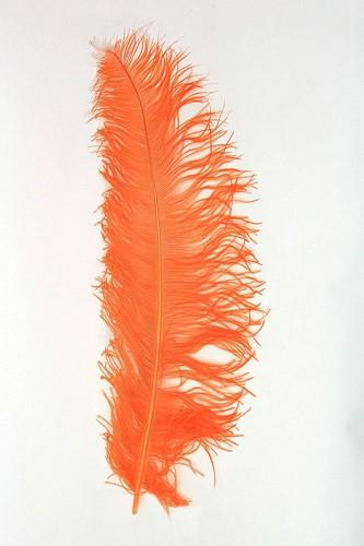 Struisvogelveren 50-60cm Oranje
