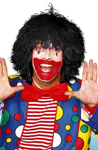 Clownspruik draadjes Zwart