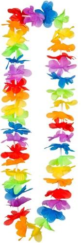 Hawaiikrans Regenboog