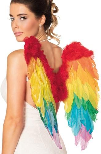 Engelen Vleugels Regenboog (50x50cm)