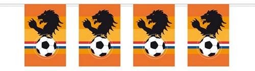 Vlaggenlijn Oranje Leeuw 10mtr