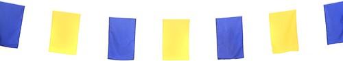 Poly Vlaggenlijn Blauw/Geel 10mtr