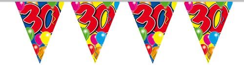 Vlaggenlijn 30 jaar 10mtr