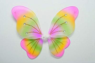 Vleugels Rainbow+Diamanten