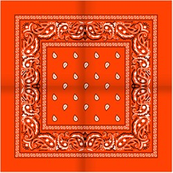 Zakdoek Oranje (54x54cm)