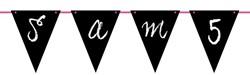 Beschrijfbare Vlaggenlijn Zwart 6m