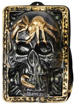 Wanddeco Skull Zilver 35X24cm
