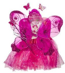 Feeënsetje Pink (4 delig)