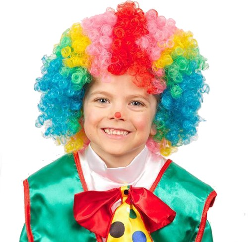 Clownspruik Multi voor Kinderen