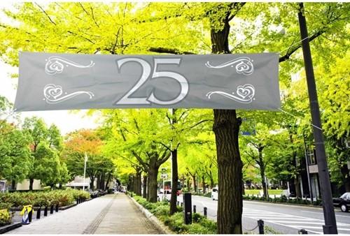 Banner 25 Zilver 180x40cm