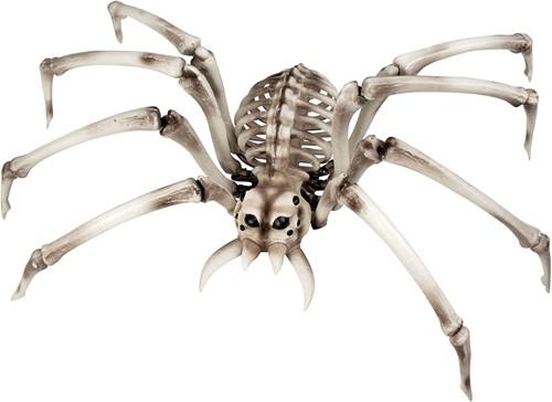 Halloween Decoratie Skelet Spin (48x82cm)