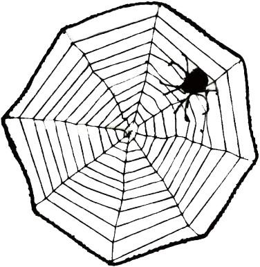 Spin & Web (40cm)