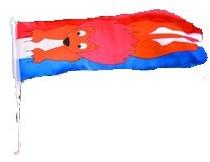 Autovlag Leeuw Oranje