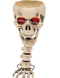 Schedel op Skelettenhand