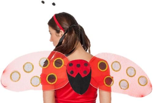 Vleugels Lieveheersbeestje met Diadeem