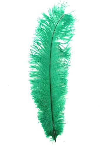 Struisvogelveren ca. 30cm Groen