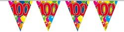 Vlaggenlijn 100jaar 10mtr