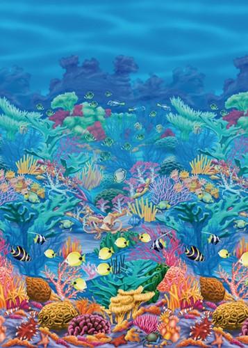 Scenesetter Coral Reef