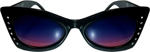 Bril Kat Zwart