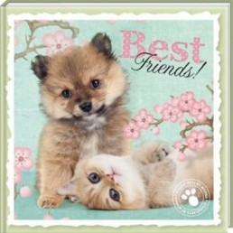 Boek Best Friends - Studio Pets