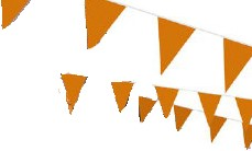 Vlaggenlijn Oranje 10mtr