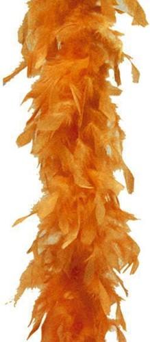 Boa Budget  Oranje