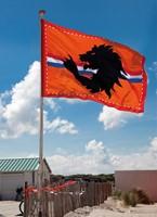 Reuze Vlag Leeuw Oranje 300X200CM (voorbeeld)